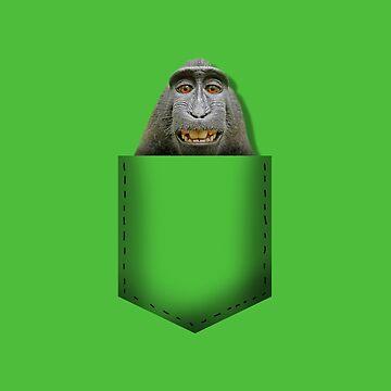 Monkey pocket by whereismypanda