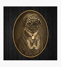 Nobility Dogs 01 Photographic Print