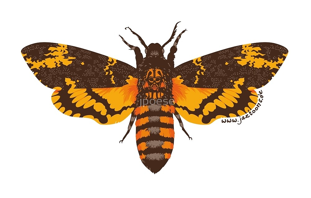 Darth's Head Moth by jpoese