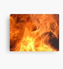 Born from Flames Metal Print