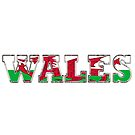 WALES by Craig Stronner