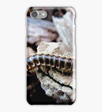 Millipede  iPhone Case/Skin