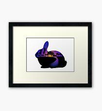 Sunset  Rabbit  Framed Print