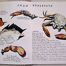 Crab Fragments by Evelyn Bach