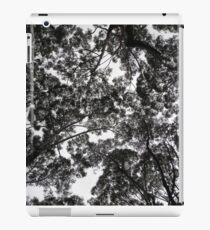 Eucalyptus, NSW, Australia iPad Case/Skin
