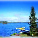 Alaska in Colour by Charmiene Maxwell-Batten