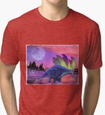 Aurorus Tri-blend T-Shirt