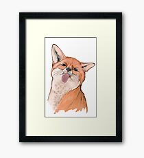 Silly fox Framed Print