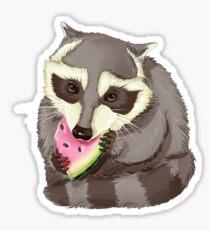 Raccoon with a watermelon Sticker
