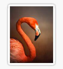 Caribean flamingo portrait Sticker