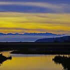 sunset over the olympics by dedmanshootn