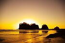 sunset gold, james island, washington, usa by dedmanshootn