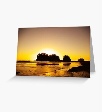 sunset gold, james island, washington, usa Greeting Card