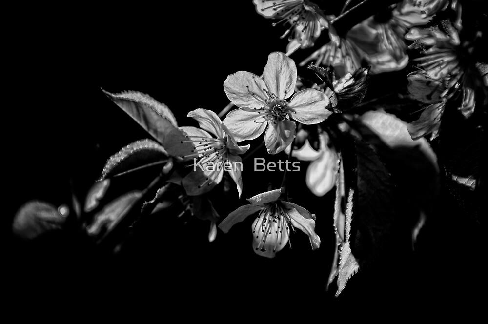 """Cherry Blossom (Black and White)"" by Karen Betts | Redbubble"