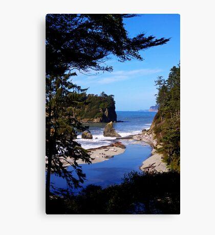 spectacular ruby beach, wa, usa Canvas Print