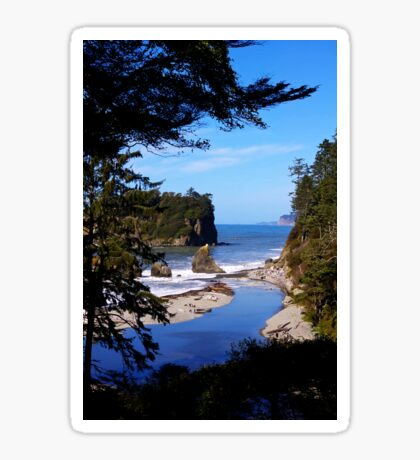 spectacular ruby beach, wa, usa Sticker
