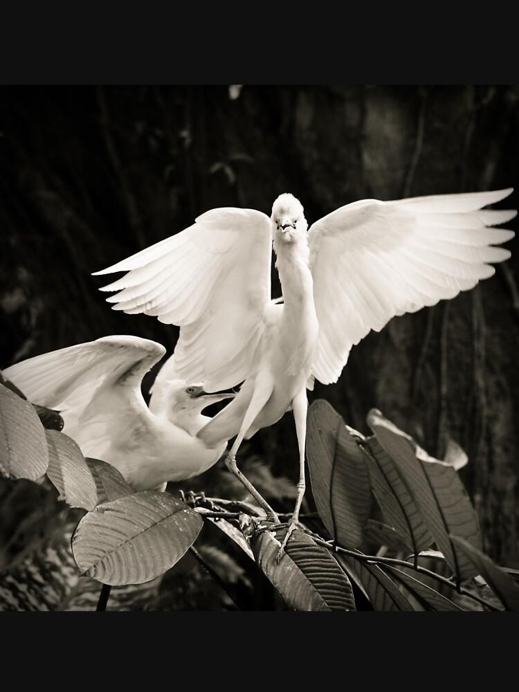 White bird dance by Juhku