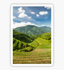 Landscape of rice terraces in china Sticker