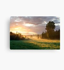 Foggy grassland and trees at sunrise Canvas Print