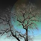 Twistangled - A Sleeping Tree Against The Sky by ArtCreationist