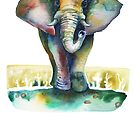 Elephant Reflections by dotsofpaint