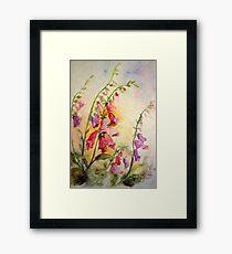 French Foxgloves Framed Print