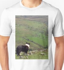 Among the mountains of Llanfairfechan. Unisex T-Shirt