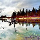 Policeman's Pond, Canmore, Alberta, Canada by Laurast