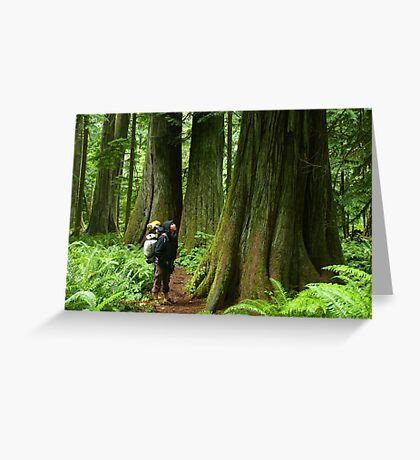 Meeting with a forest giant Greeting Card