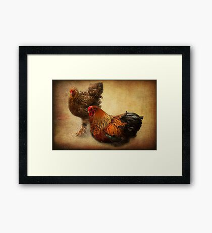 Rooster and hen Framed Print