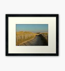 Path through the dunes Framed Print