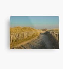 Path through the dunes Metal Print