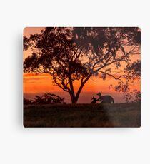 Australiana Metal Print