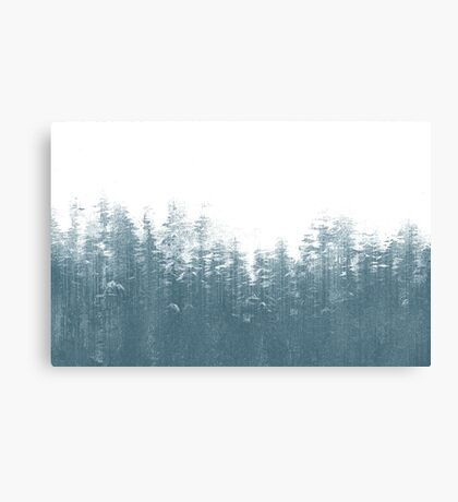 winter things Canvas Print