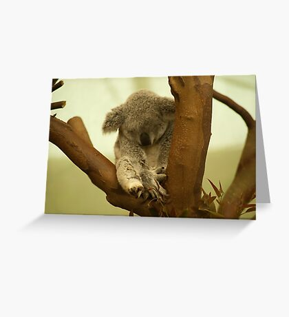 Sooo soft and cuddly  Greeting Card