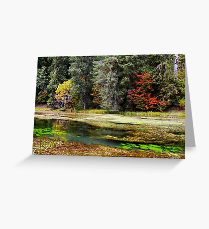 autumn spring Greeting Card