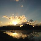 Sunset Wetlands by byronbackyard