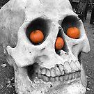 Skull with pumpkins by Robert Steadman