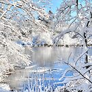 The Magic of Winter by Poete100