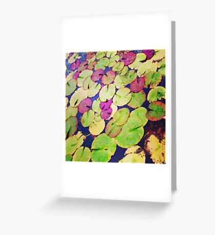 Lilypads Greeting Card