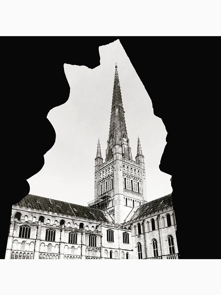 Norwich Cathedral by robsteadman