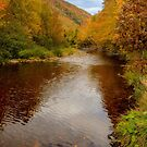Cabot Trail Autumn 2015 by kenmo