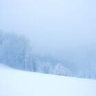 Foggy and snowy Black Forest by Imi Koetz