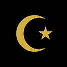 Star and Crescent (GOLD) by Omar Dakhane