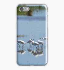 Flock of Snowy Egrets at Chincoteague No. 1 iPhone Case/Skin