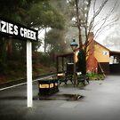 Menzies Creek by Karen Gunn