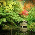Alfred Nicholas Garden by Karen Gunn