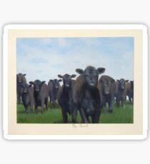 9 black cows: the Court Sticker