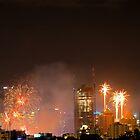 New Year Fireworks (Brisbane City) 31/12/2015 by W E NIXON  PHOTOGRAPHY