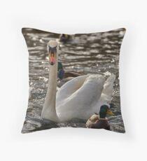 Swan on the Neckar Throw Pillow